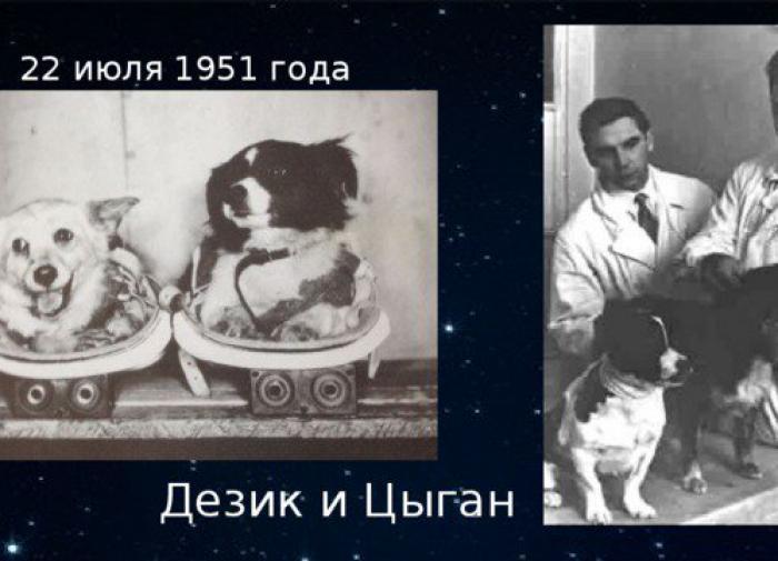 Дезик и цыган в космосе