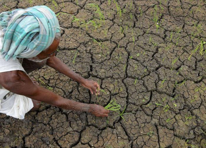 засуха, Индия