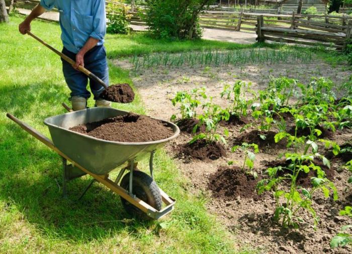 Удобряем огород