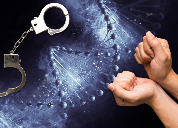 ДНК полиция