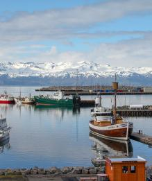 Исландия. Последние новости по теме