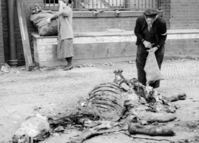 """Жители Берлина срезают мясо с мертвой лошади. Апрель 1945 г. Проект """"Последний подвиг генерала Берзарина""""."""