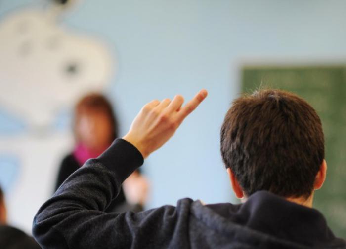 ученик поднимает руку на уроке