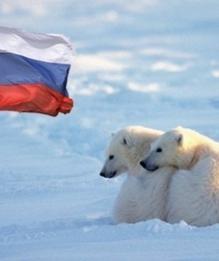 Арктика. Последние новости по теме