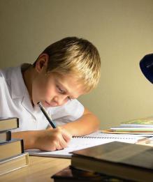 Образование. Последние новости по теме