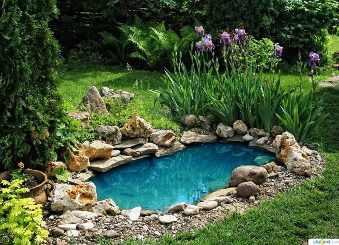 Пруд в саду, фото pinterest. ru